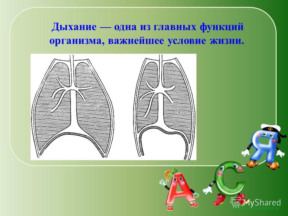 http://lara3172.blogspot.ru/ Дыхание одна из главных функций организма, важнейшее условие жизни.