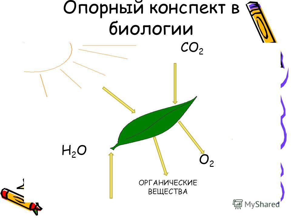 Опорный конспект в биологии СО