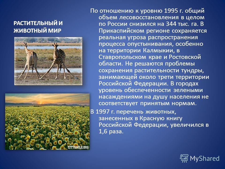РАСТИТЕЛЬНЫЙ И ЖИВОТНЫЙ МИР По отношению к уровню 1995 г. общий объем лесовосстановления в целом по России снизился на 344 тыс. га. В Прикаспийском регионе сохраняется реальная угроза распространения процесса опустынивания, особенно на территории Кал