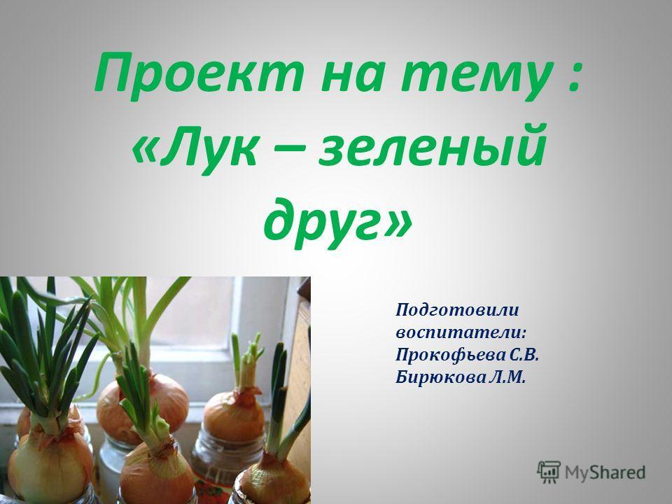 Проект на тему : «Лук – зеленый друг» Подготовили воспитатели: Прокофьева С.В. Бирюкова Л.М.