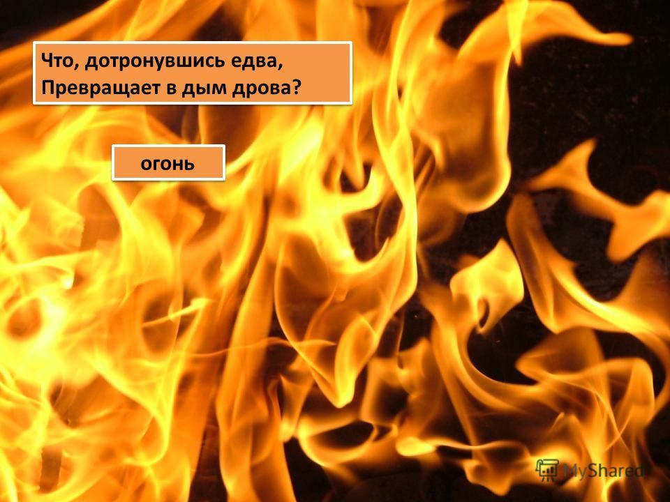 Что, дотронувшись едва, Превращает в дым дрова? Что, дотронувшись едва, Превращает в дым дрова? огонь