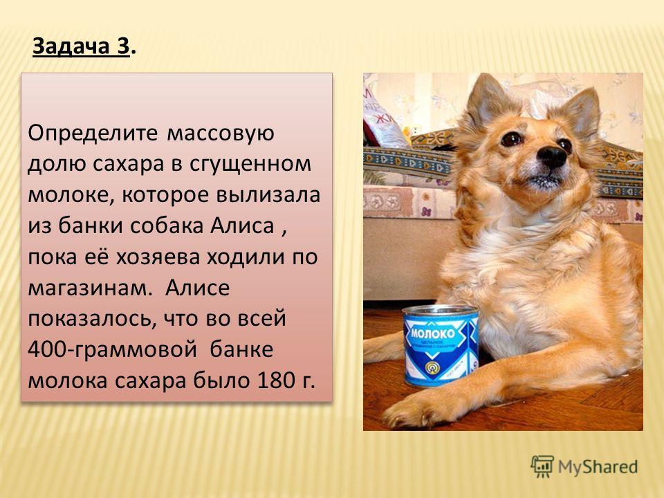 Определите массовую долю сахара в сгущенном молоке, которое вылизала из банки собака Алиса, пока её хозяева ходили по магазинам. Алисе показалось, что во всей 400-граммовой банке молока сахара было 180 г. Определите массовую долю сахара в сгущенном м