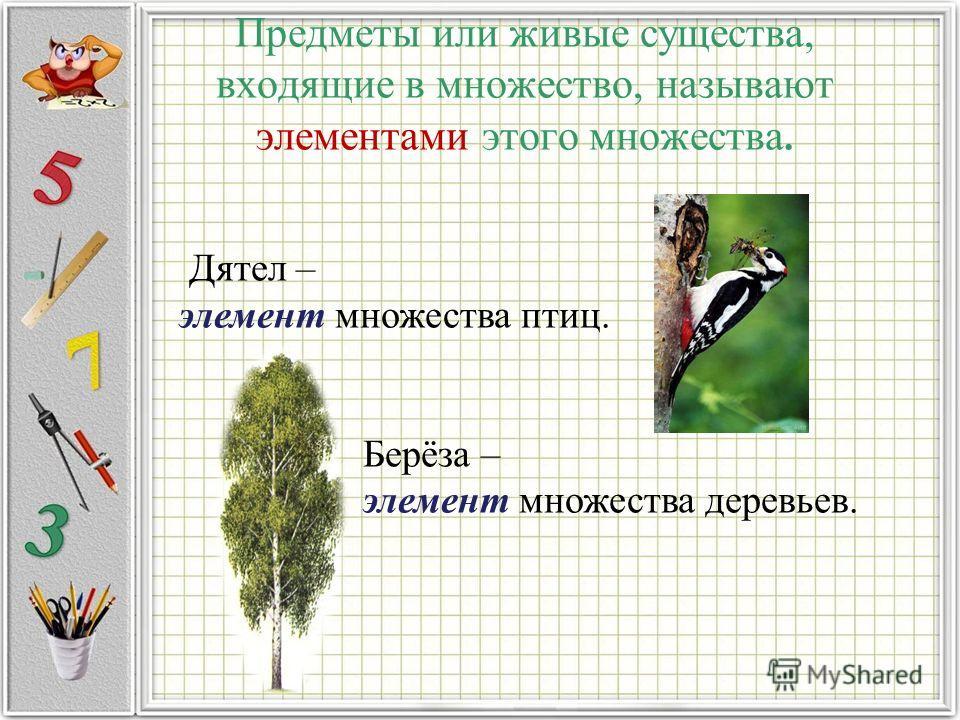 Предметы или живые существа, входящие в множество, называют элементами этого множества. Дятел – элемент множества птиц. Берёза – элемент множества деревьев.