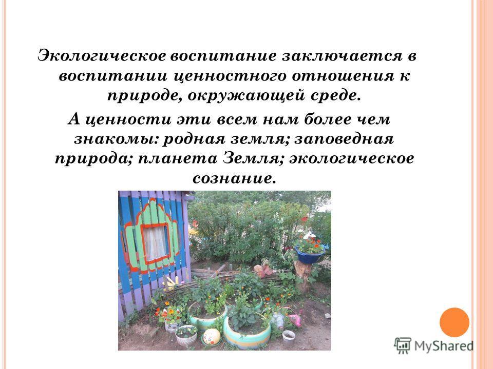 Экологическое воспитание заключается в воспитании ценностного отношения к природе, окружающей среде. А ценности эти всем нам более чем знакомы: родная земля; заповедная природа; планета Земля; экологическое сознание.
