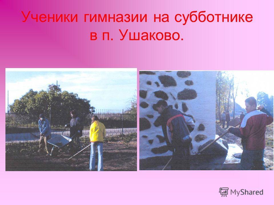 Ученики гимназии на субботнике в п. Ушаково.