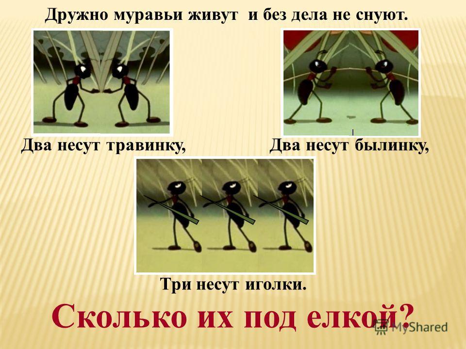Два несут травинку, Дружно муравьи живут и без дела не снуют. Два несут былинку, Три несут иголки. Сколько их под елкой?