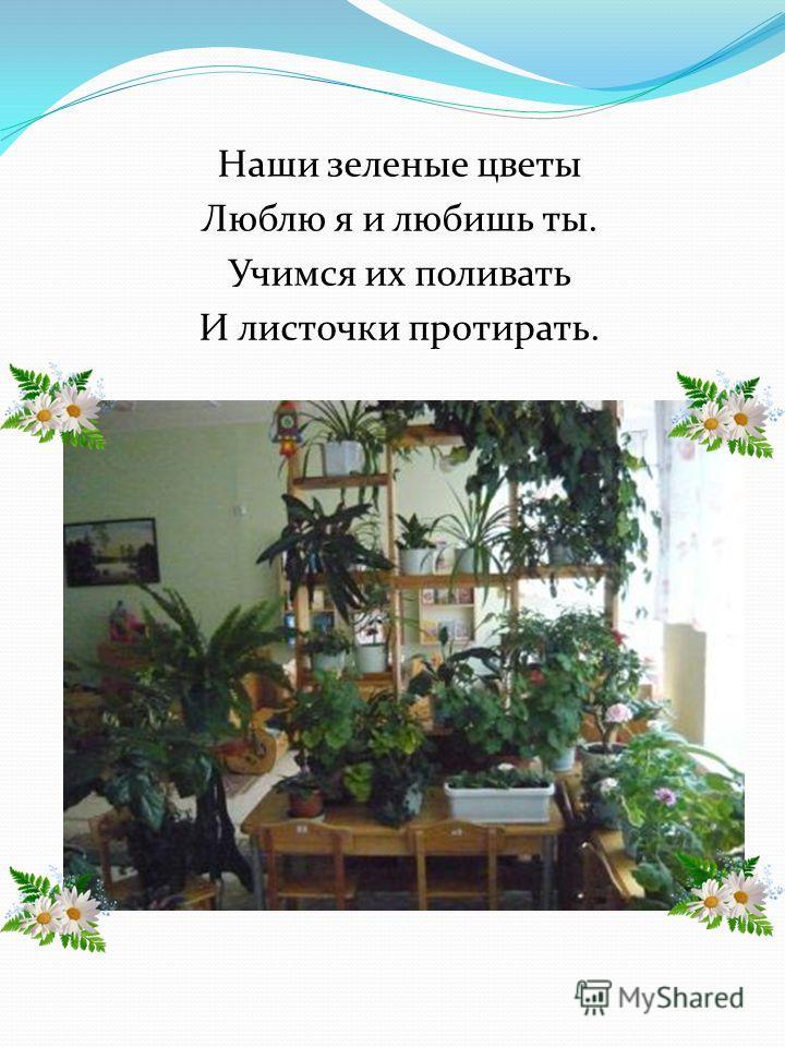 Наши зеленые цветы Люблю я и любишь ты. Учимся их поливать И листочки протирать.