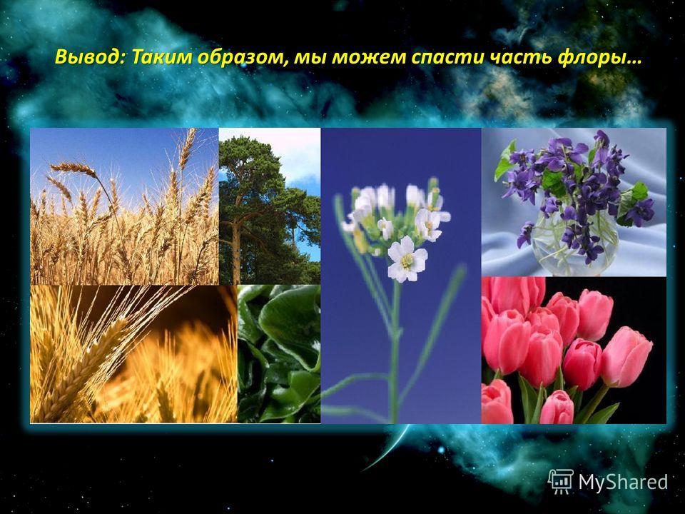 Вывод: Таким образом, мы можем спасти часть флоры…