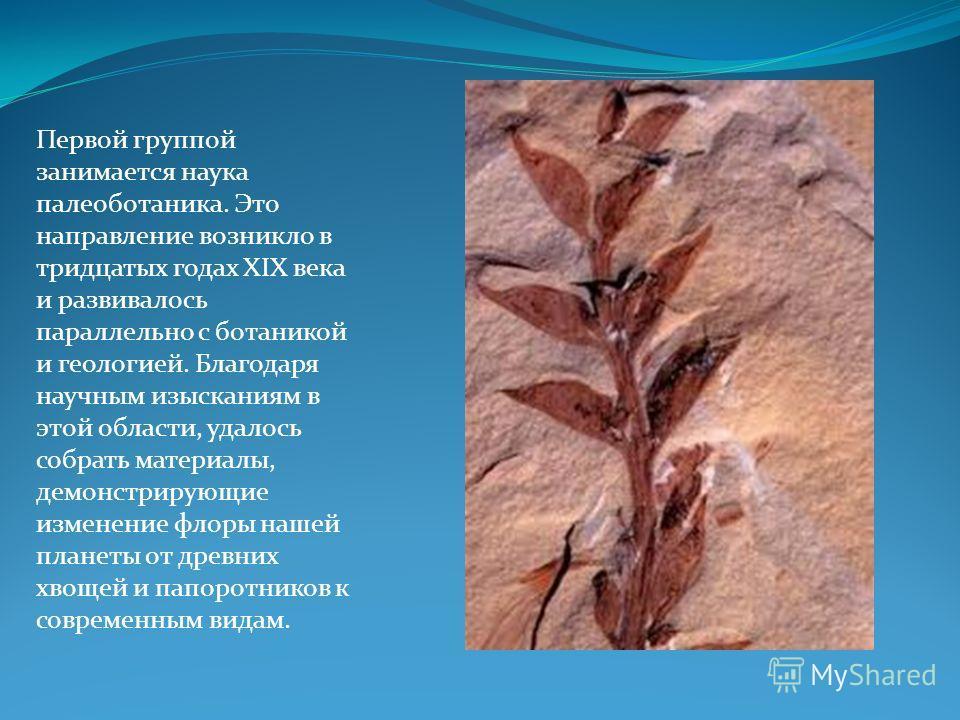 Первой группой занимается наука палеоботаника. Это направление возникло в тридцатых годах XIX века и развивалось параллельно с ботаникой и геологией. Благодаря научным изысканиям в этой области, удалось собрать материалы, демонстрирующие изменение фл