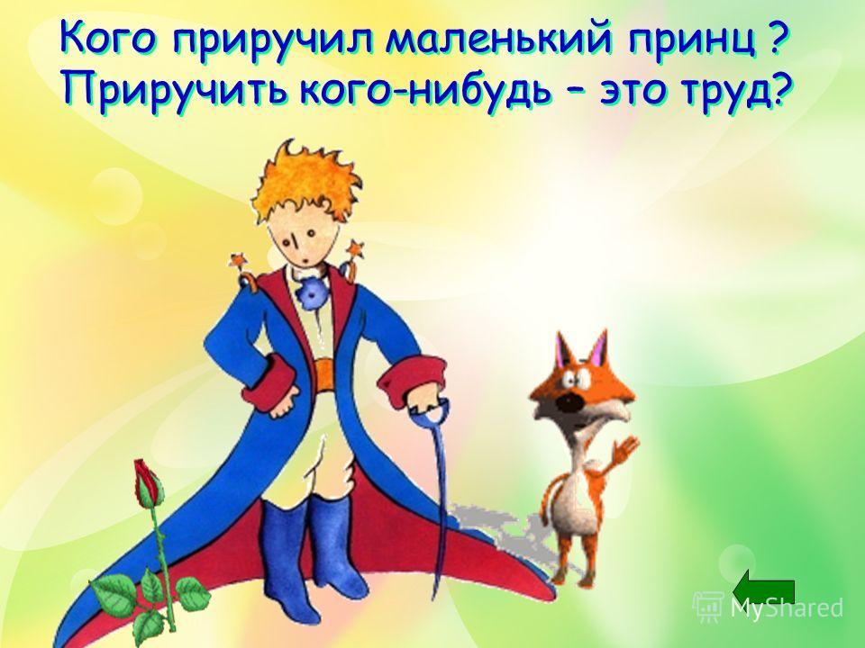 Кого приручил маленький принц ? Приручить кого-нибудь – это труд? Кого приручил маленький принц ? Приручить кого-нибудь – это труд?