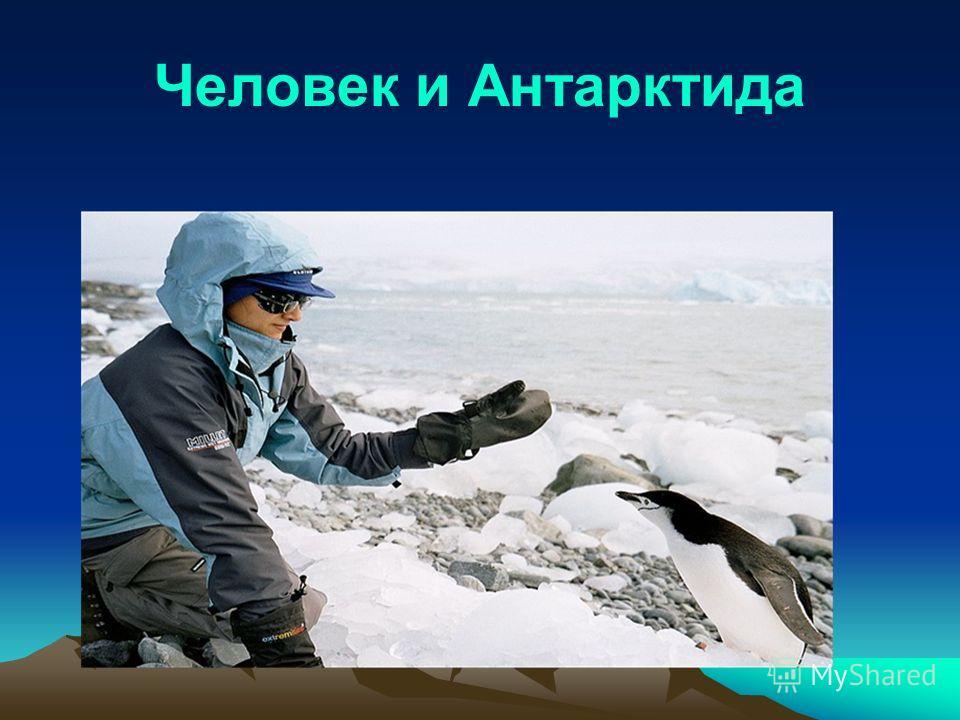 Человек и Антарктида