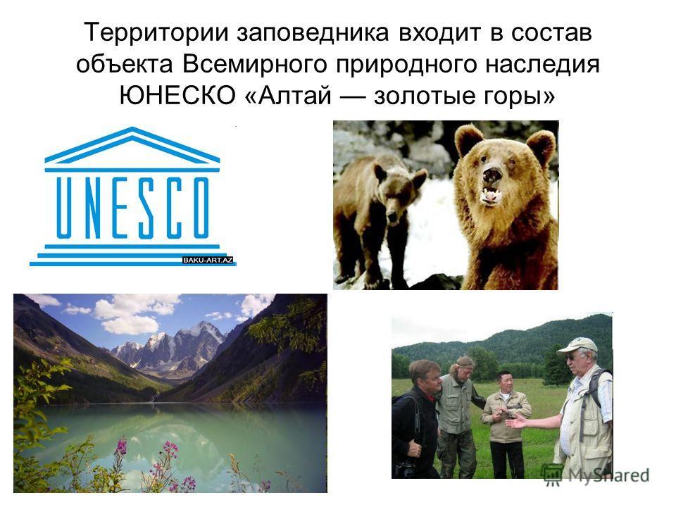 Территории заповедника входит в состав объекта Всемирного природного наследия ЮНЕСКО «Алтай золотые горы»