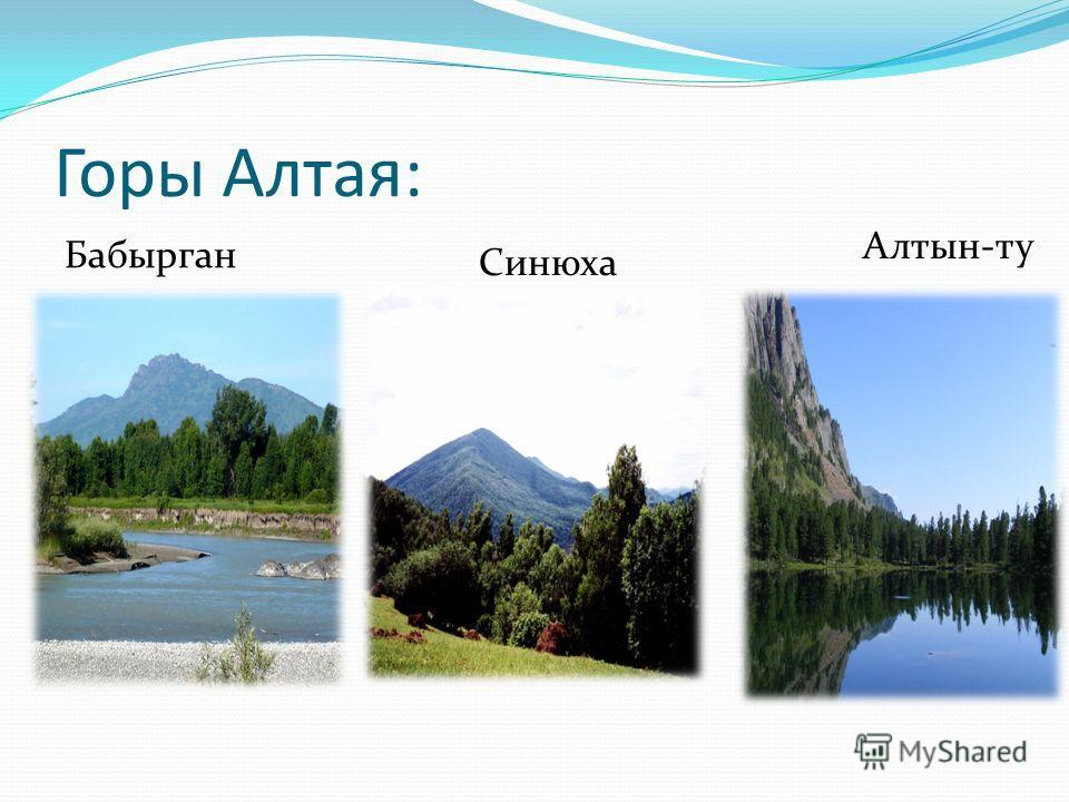 Горы Алтая: Бабырган Синюха Алтын-ту