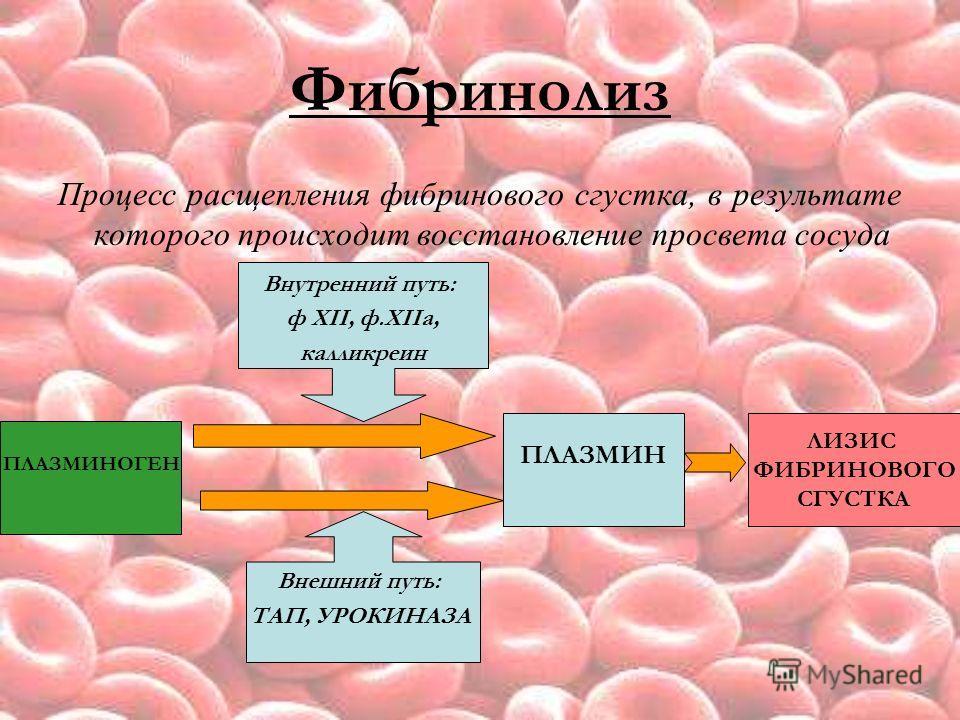 Фибринолиз Процесс расщепления фибринового сгустка, в результате которого происходит восстановление просвета сосуда ПЛАЗМИНОГЕН ПЛАЗМИН ЛИЗИС ФИБРИНОВОГО СГУСТКА Внутренний путь: ф XII, ф.XIIа, калликреин Внешний путь: ТАП, УРОКИНАЗА