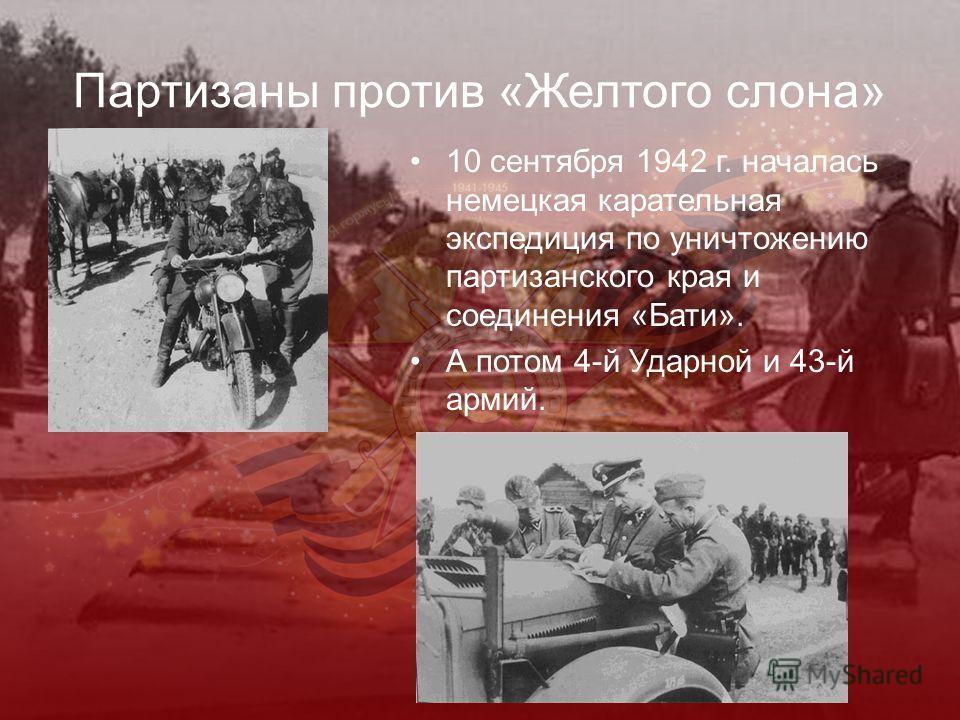 Партизаны против «Желтого слона» 10 сентября 1942 г. началась немецкая карательная экспедиция по уничтожению партизанского края и соединения «Бати». А потом 4-й Ударной и 43-й армий.