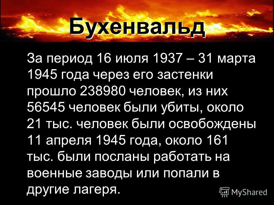 Бухенвальд За период 16 июля 1937 – 31 марта 1945 года через его застенки прошло 238980 человек, из них 56545 человек были убиты, около 21 тыс. человек были освобождены 11 апреля 1945 года, около 161 тыс. были посланы работать на военные заводы или п