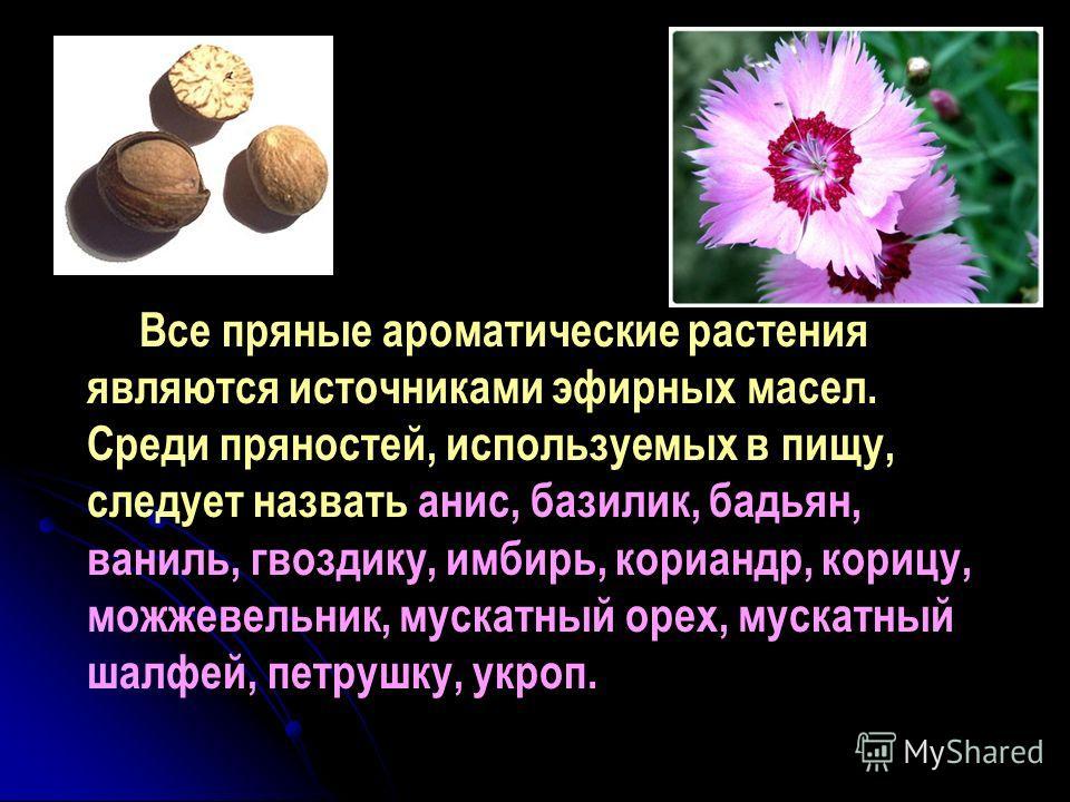 Все пряные ароматические растения являются источниками эфирных масел. Среди пряностей, используемых в пищу, следует назвать анис, базилик, бадьян, ваниль, гвоздику, имбирь, кориандр, корицу, можжевельник, мускатный орех, мускатный шалфей, петрушку, у