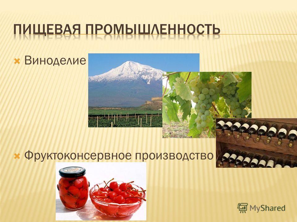 Виноделие Фруктоконсервное производство