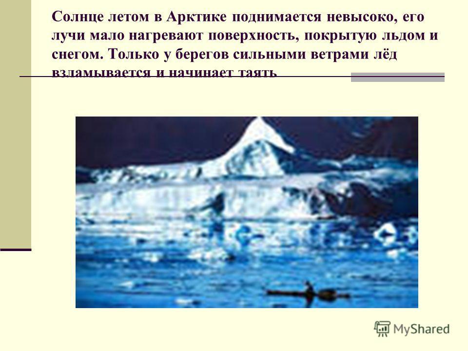 Солнце летом в Арктике поднимается невысоко, его лучи мало нагревают поверхность, покрытую льдом и снегом. Только у берегов сильными ветрами лёд взламывается и начинает таять