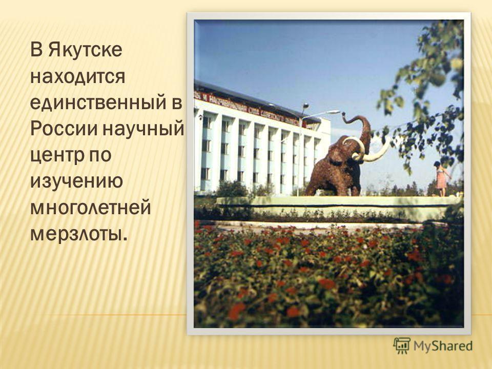 В Якутске находится единственный в России научный центр по изучению многолетней мерзлоты.