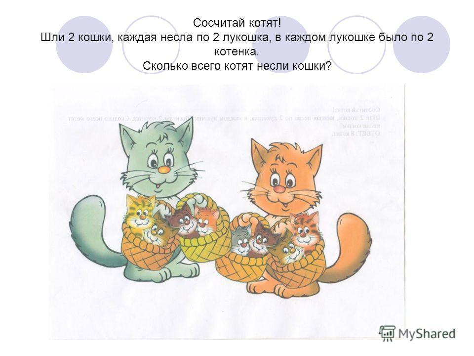 Сосчитай котят! Шли 2 кошки, каждая несла по 2 лукошка, в каждом лукошке было по 2 котенка. Сколько всего котят несли кошки?