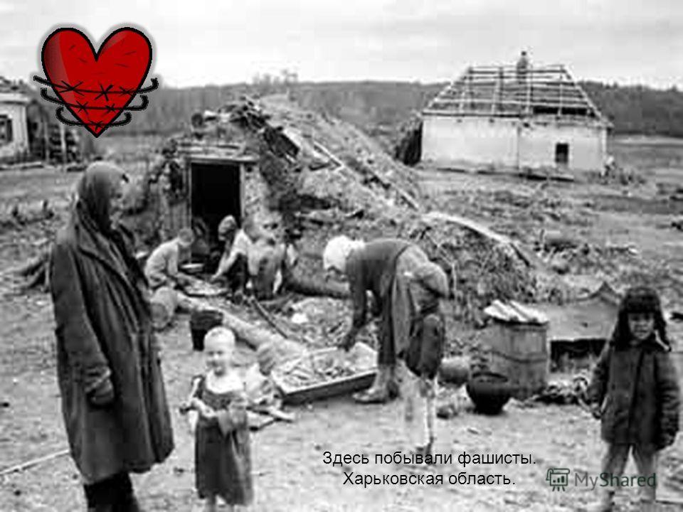 Здесь побывали фашисты. Харьковская область.