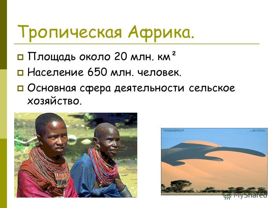 Тропическая Африка. Площадь около 20 млн. км² Население 650 млн. человек. Основная сфера деятельности сельское хозяйство.