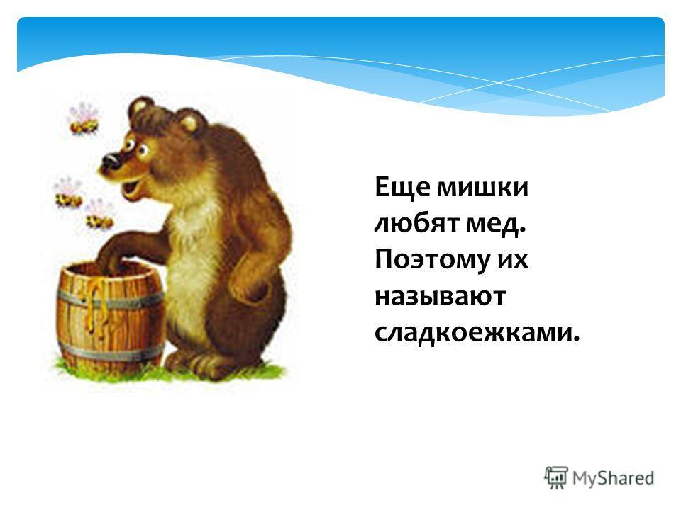 Еще мишки любят мед. Поэтому их называют сладкоежками.