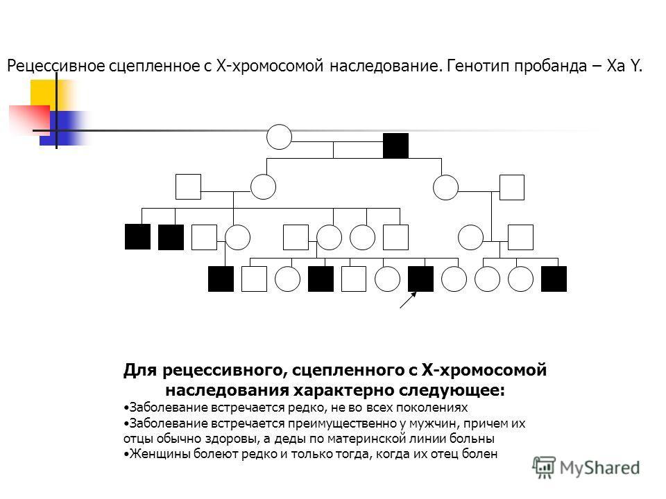 Рецессивное сцепленное с Х-хромосомой наследование. Генотип пробанда – Ха Y. Для рецессивного, сцепленного с Х-хромосомой наследования характерно следующее: Заболевание встречается редко, не во всех поколениях Заболевание встречается преимущественно