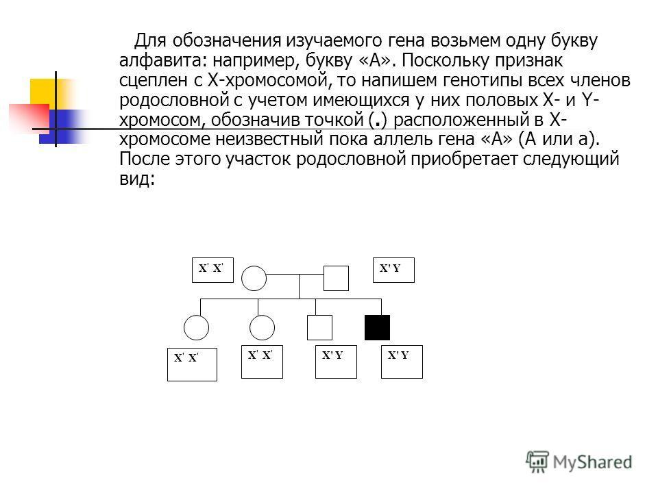 Для обозначения изучаемого гена возьмем одну букву алфавита: например, букву «А». Поскольку признак сцеплен с Х-хромосомой, то напишем генотипы всех членов родословной с учетом имеющихся у них половых Х- и Y- хромосом, обозначив точкой (.) расположен