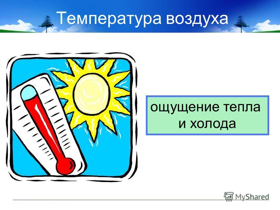 Температура воздуха ощущение тепла и холода