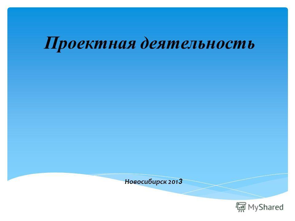 Проектная деятельность Новосибирск 201 3