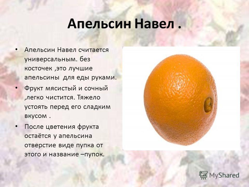 Апельсин Навел. Апельсин Навел считается универсальным. без косточек,это лучшие апельсины для еды руками. Фрукт мясистый и сочный,легко чистится. Тяжело устоять перед его сладким вкусом. После цветения фрукта остаётся у апельсина отверстие виде пупка