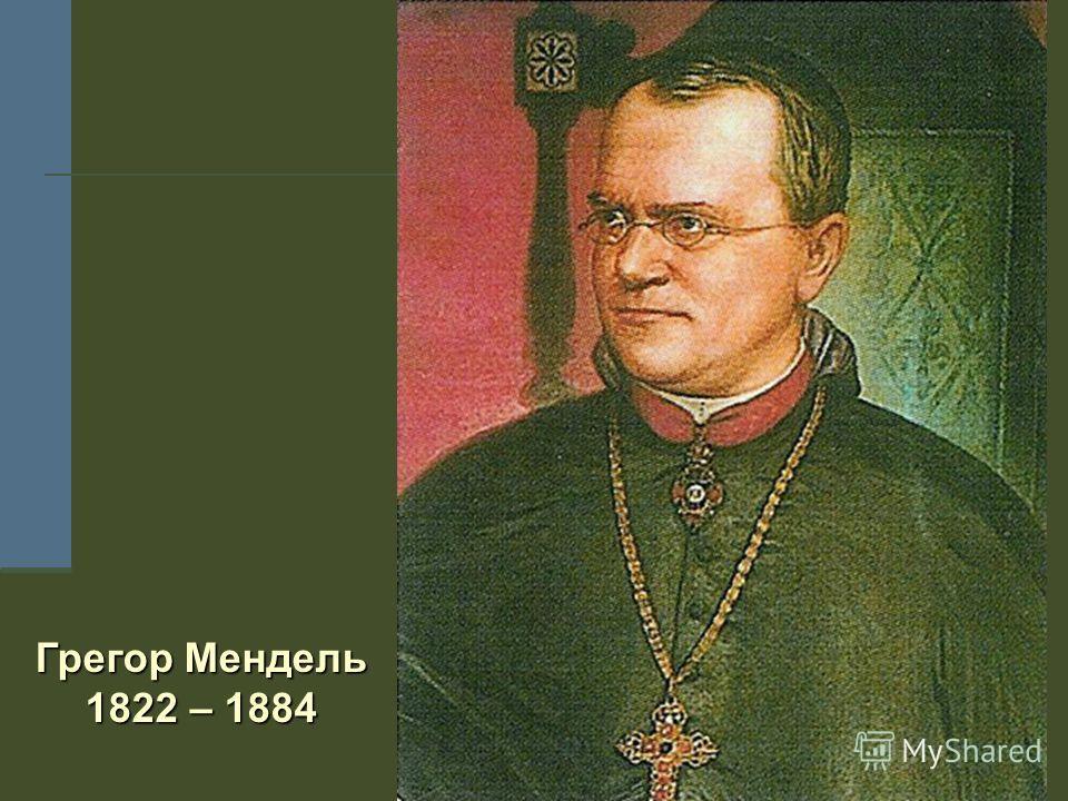 Грегор Мендель 1822 – 1884
