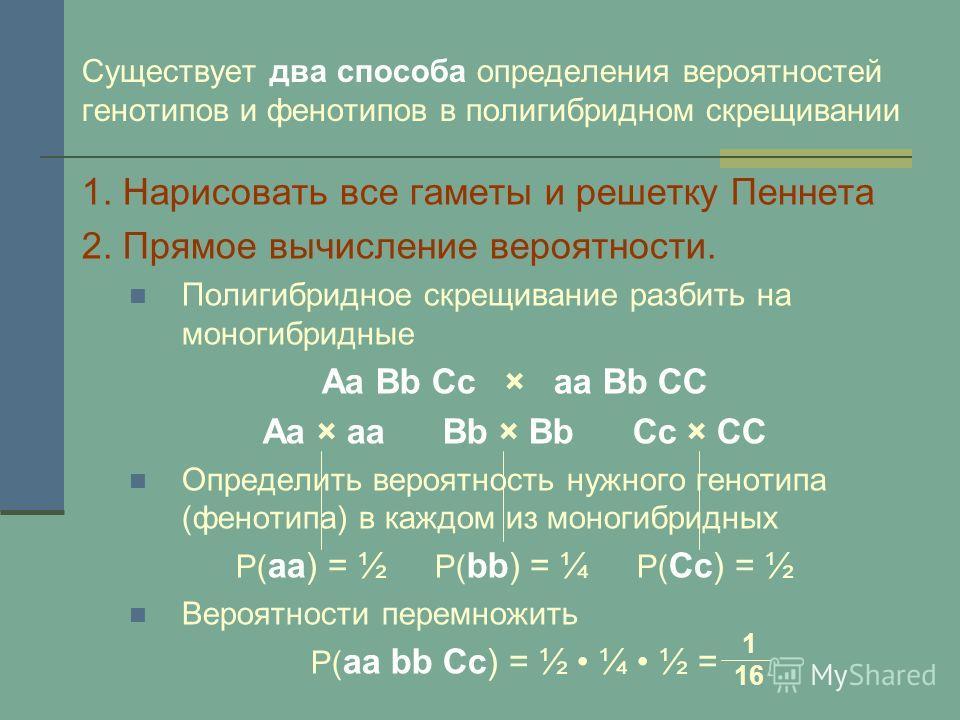 Существует два способа определения вероятностей генотипов и фенотипов в полигибридном скрещивании 1. Нарисовать все гаметы и решетку Пеннета 2. Прямое вычисление вероятности. Полигибридное скрещивание разбить на моногибридные Аа Вb Cc × aa Bb CC Аа ×