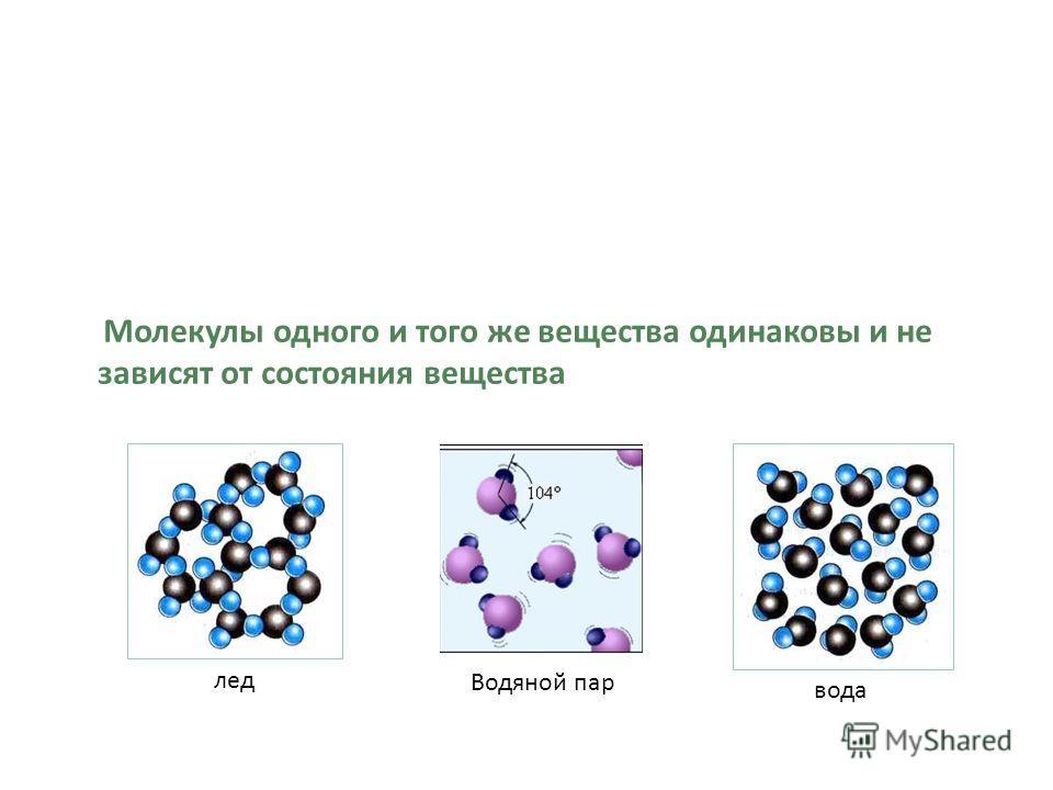 Молекулы одного и того же вещества одинаковы и не зависят от состояния вещества лед Водяной пар вода