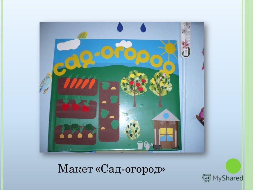 Макет «Сад-огород»