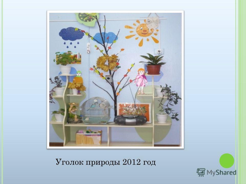 Уголок природы 2012 год