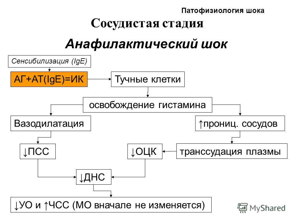 Патофизиология шока Сосудистая стадия Анафилактический шок АГ+АТ(IgE)=ИК Сенсибилизация (IgE) Тучные клетки освобождение гистамина Вазодилатацияпрониц. сосудов транссудация плазмы ПССОЦК ДНС УО и ЧСС (МО вначале не изменяется)