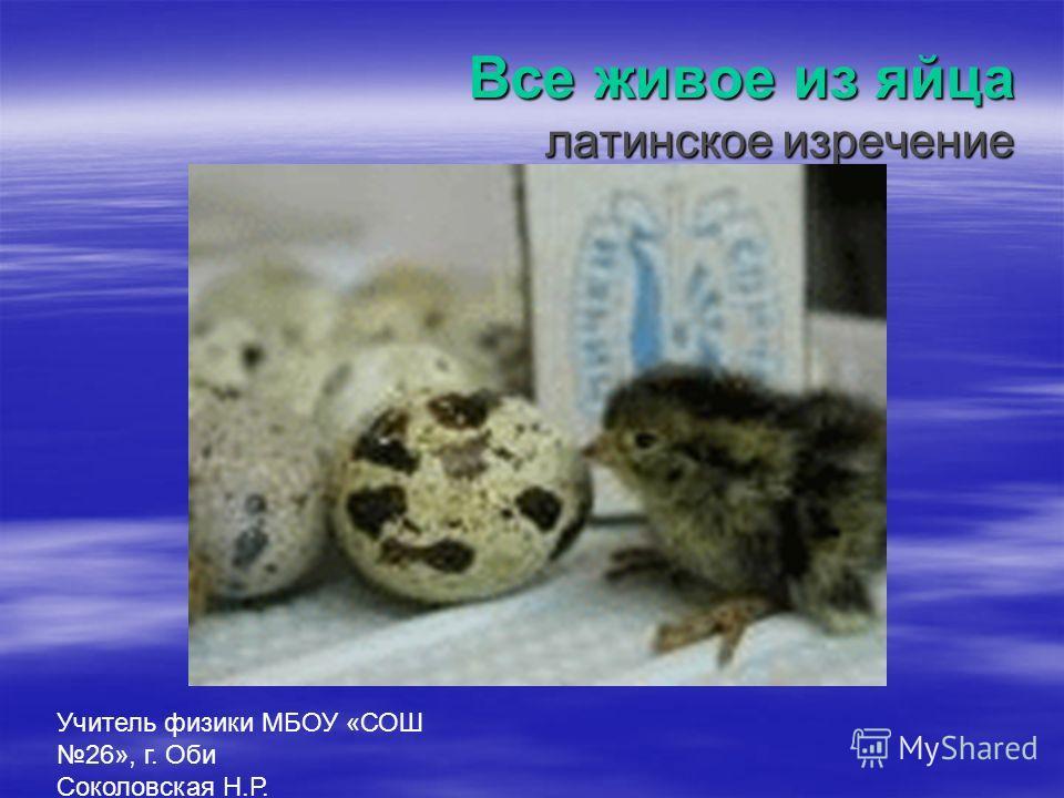 Все живое из яйца латинское изречение Учитель физики МБОУ «СОШ 26», г. Оби Соколовская Н.Р.