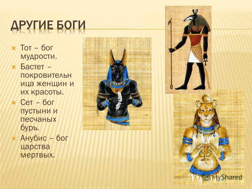 Тот – бог мудрости. Бастет – покровительн ица женщин и их красоты. Сет – бог пустыни и песчаных бурь. Анубис – бог царства мертвых.