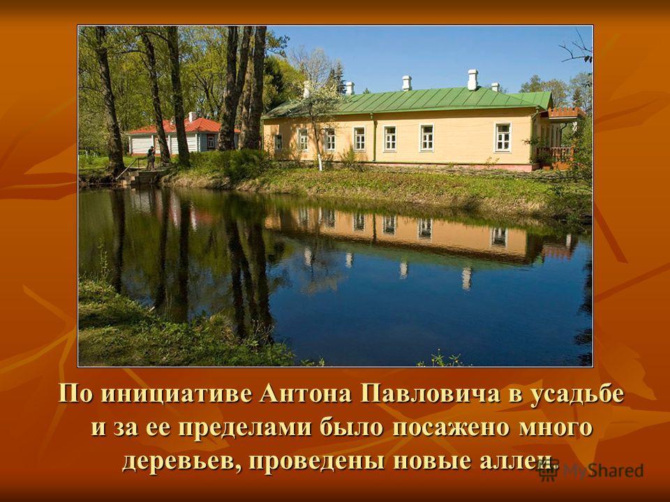 По инициативе Антона Павловича в усадьбе и за ее пределами было посажено много деревьев, проведены новые аллеи.