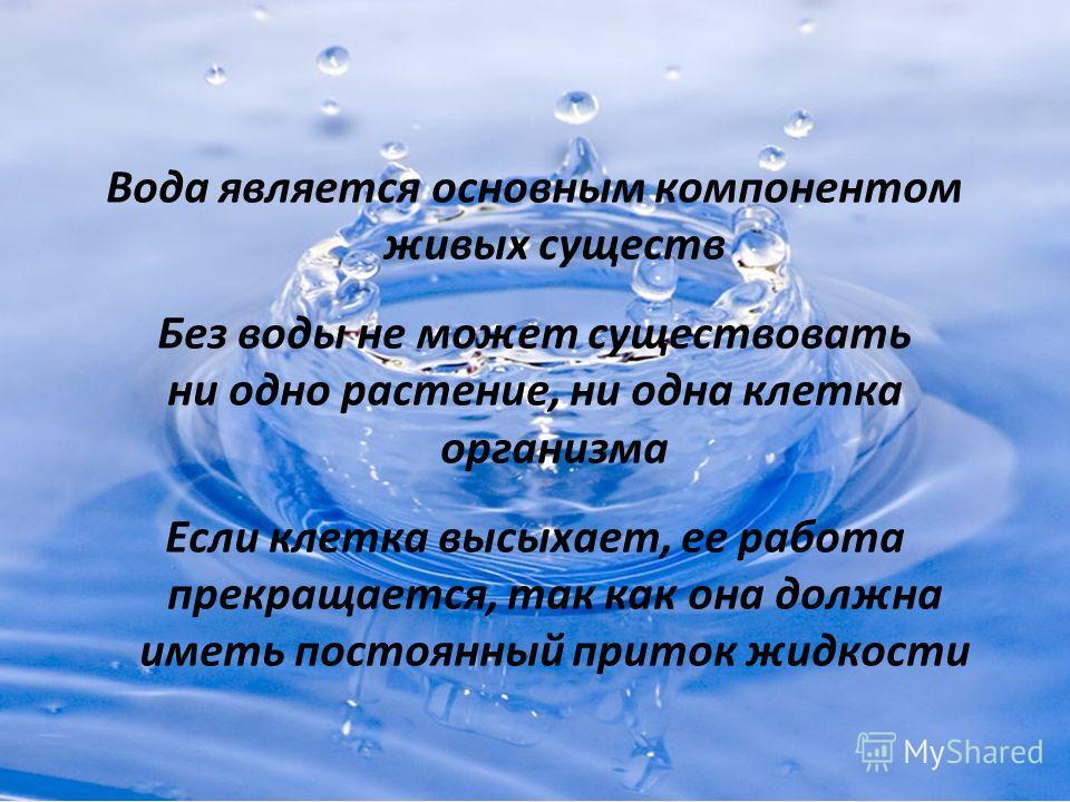 Вода является основным компонентом живых существ Без воды не может существовать ни одно растение, ни одна клетка организма Если клетка высыхает, ее работа прекращается, так как она должна иметь постоянный приток жидкости