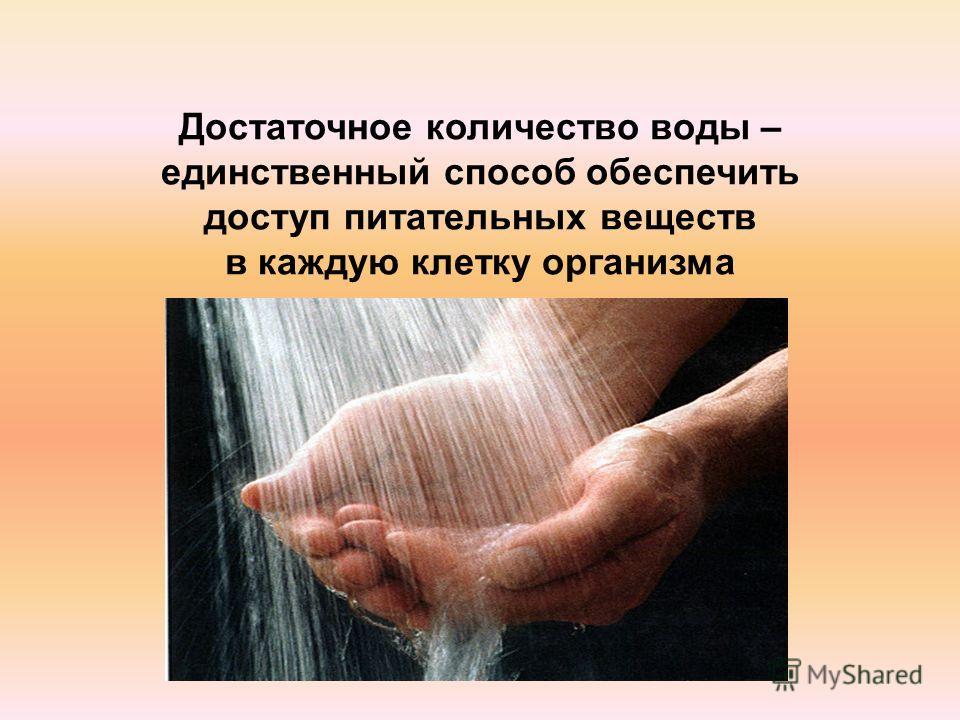 Достаточное количество воды – единственный способ обеспечить доступ питательных веществ в каждую клетку организма