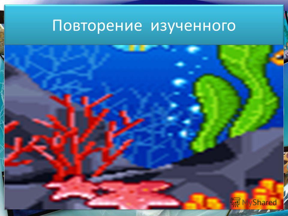 Повторение изученного 16.05.2014http://aida.ucoz.ru7