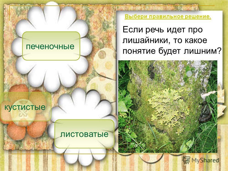 печеночные кустистые листоватые Если речь идет про лишайники, то какое понятие будет лишним? Выбери правильное решение.