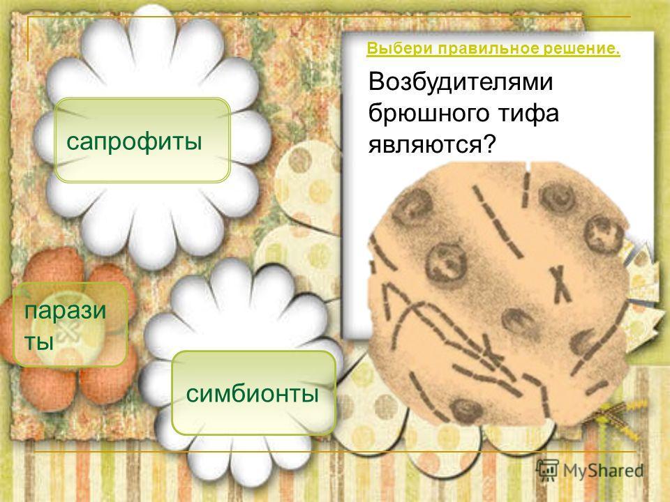 парази ты сапрофиты симбионты Возбудителями брюшного тифа являются? Выбери правильное решение.