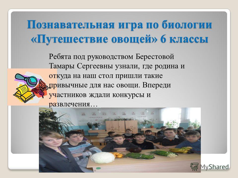 Познавательная игра по биологии «Путешествие овощей» 6 классы Ребята под руководством Берестовой Тамары Сергеевны узнали, где родина и откуда на наш стол пришли такие привычные для нас овощи. Впереди участников ждали конкурсы и развлечения…