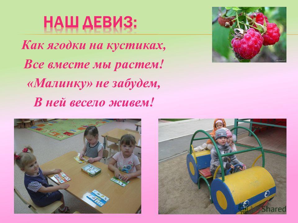 Как ягодки на кустиках, Все вместе мы растем! «Малинку» не забудем, В ней весело живем!