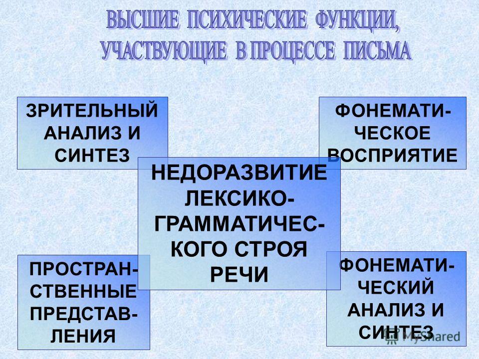 ПРОСТРАН- СТВЕННЫЕ ПРЕДСТАВ- ЛЕНИЯ ФОНЕМАТИ- ЧЕСКОЕ ВОСПРИЯТИЕ ЗРИТЕЛЬНЫЙ АНАЛИЗ И СИНТЕЗ ФОНЕМАТИ- ЧЕСКИЙ АНАЛИЗ И СИНТЕЗ НЕДОРАЗВИТИЕ ЛЕКСИКО- ГРАММАТИЧЕС- КОГО СТРОЯ РЕЧИ